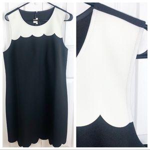 NWT J. CREW 12 Sleeveless Scallop Trim Dress